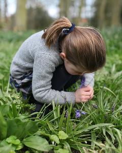 Кейт Міддлтон опублікувала нове фото 4-річної принцеси Шарлотти