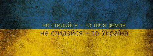 1604731_589785291089937_15187361_n.jpg