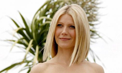 33_gwyneth_paltrow.jpg (22.07 Kb)